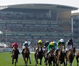 grand national live odds