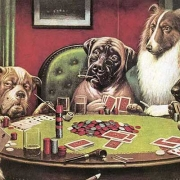 Do Animals Gambling