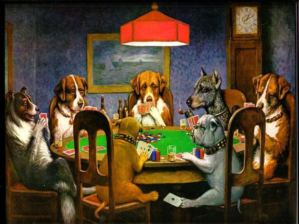 Gambling Dog