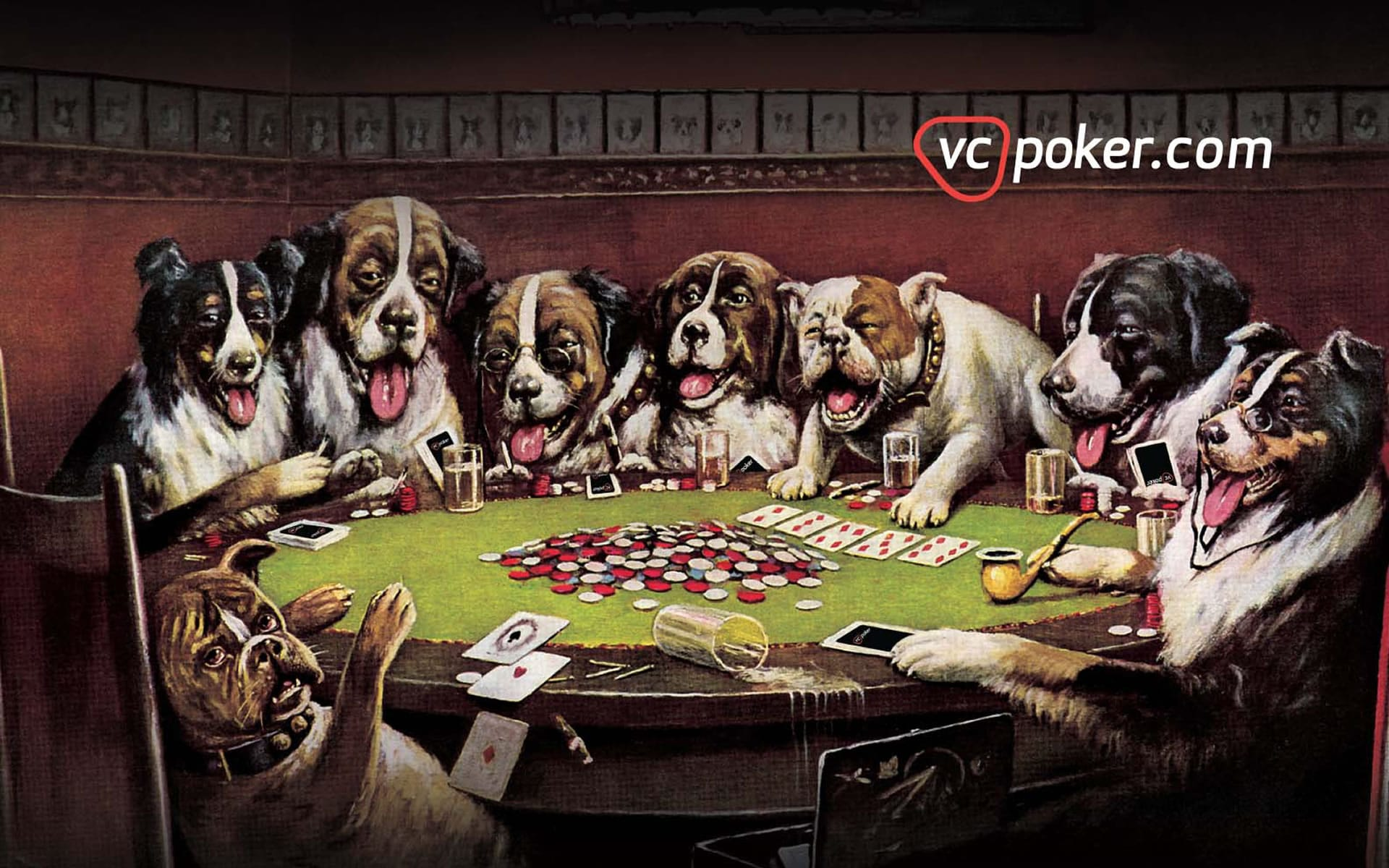 Love the dogs casino casino abs alberta